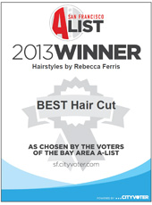 Best Hair Cut Winner 2013